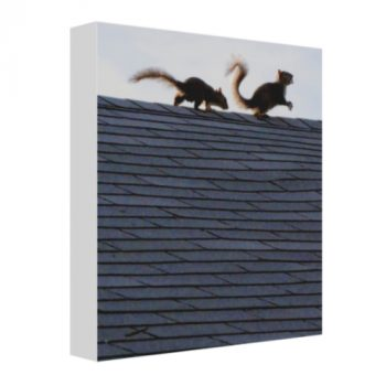 """""""Where the Wild Things Are"""" - Thin Mounted Stretched Canvas Photo Print"""